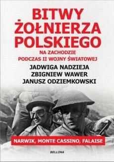Bitwy żołnierza polskiego na Zachodzie. Narwik, Monte Cassino, Falaise