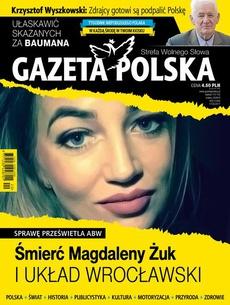 Gazeta Polska 17/05/2017