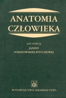 sokołowska pituchowa anatomia człowieka pdf chomikuj