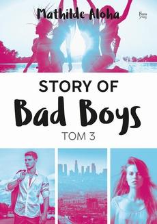Story of Bad Boys 3