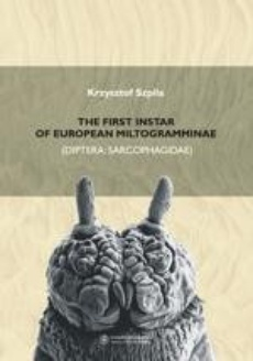 The first instar of european miltogramminae