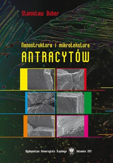 Nanostruktura i mikrotekstura antracytów - 03 Nanostruktura i mikrotekstura antracytów