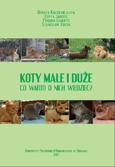 Koty małe i duże. Co warto o nich wiedzieć?