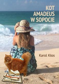 Kot Amadeus w Sopocie