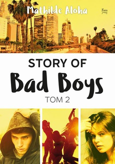 Story of Bad Boys 2