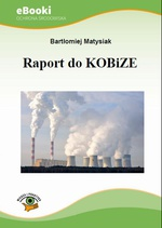 Raport do KOBiZE